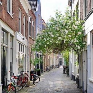 Old City Leiden Alley